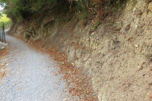 Bordighera (IM) – Sentiero del Beodo