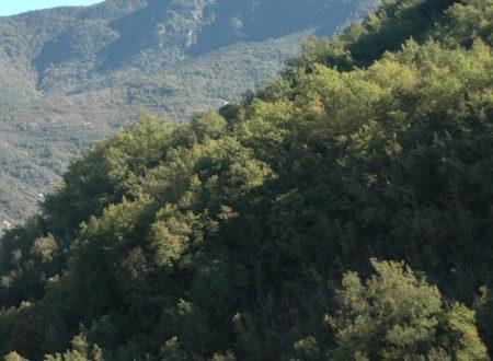 Apricale (IM) – una vista sulle alture