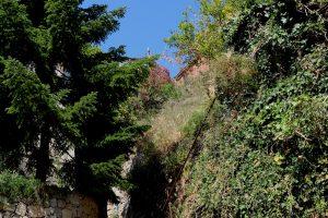 Ventimiglia (IM) – Località Calandri
