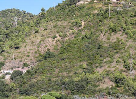 Camporosso (IM): Località Serro