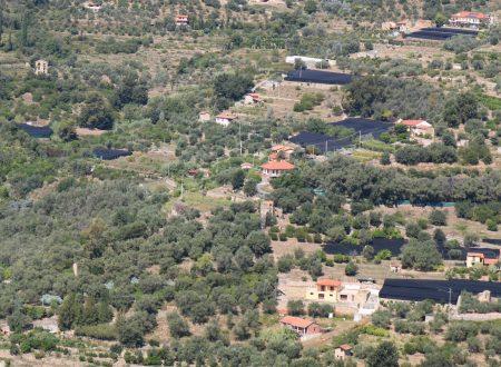 Vallebona (IM): vallata del rio Battagli